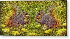 Tale Of Two Squirrels Acrylic Print