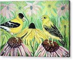Talking Finches Acrylic Print by Ann Ingham
