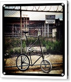 Tall Bike Acrylic Print by Natasha Marco