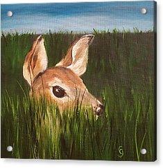 Tall Grass    #63 Acrylic Print