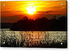 Tall Grass Sunset 2 Smith Mountain Lake Acrylic Print