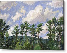 Tall Pines At Tanglewood Acrylic Print