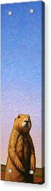 Tall Prairie Dog Acrylic Print by James W Johnson