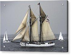 Tall Ship Acrylic Print by Dapixara Art