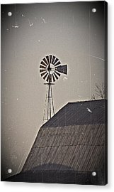 Acrylic Print featuring the photograph Taller Than You- Fine Art Photography by KayeCee Spain