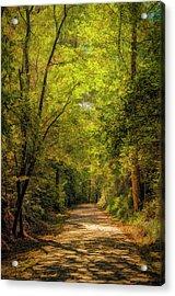 Tallulah Trail Acrylic Print