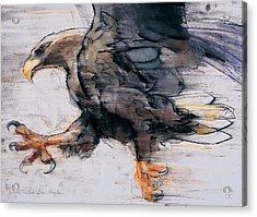 Talons   White Tailed Sea Eagle Acrylic Print by Mark Adlington