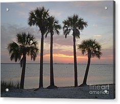 Tampa Bay Sunset Acrylic Print by Gail Kent