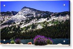 Tanaya Lake Wildflowers Yosemite Acrylic Print