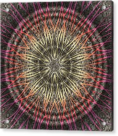 Tangendental Meditation Acrylic Print