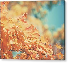 Tangerine Leaves And Turquoise Skies Acrylic Print by Lisa Russo
