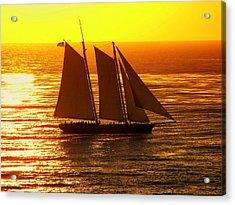 Tangerine Sails Acrylic Print by Karen Wiles