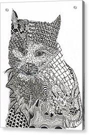 Tangled Cat Acrylic Print