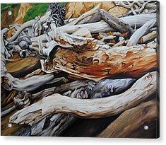 Tangled Timbers Acrylic Print