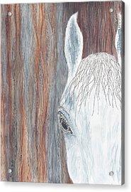 Tanglewood Acrylic Print