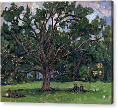 Tanglewood Tree Acrylic Print by Thor Wickstrom