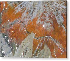 Tangy Twinkles Acrylic Print