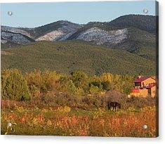 Taos New Mexico Scene Acrylic Print