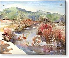 Acrylic Print featuring the painting Taos Pueblo by Yolanda Koh