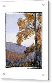 Tapestree Acrylic Print by Robert Boyette