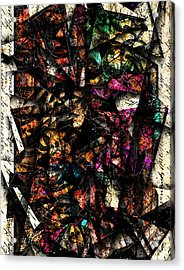 Tapestry  Acrylic Print by Gary Bodnar