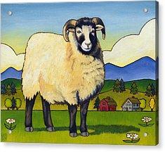 Taras Sheep Acrylic Print