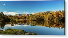 Acrylic Print featuring the photograph Tarn Hows by Mike Taylor