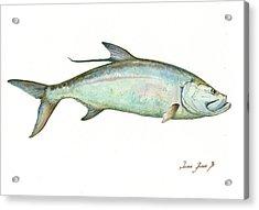 Tarpon Fishf Acrylic Print