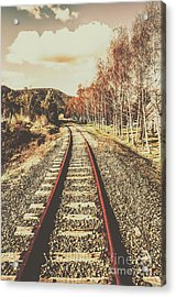 Tasmanian Country Tracks Acrylic Print