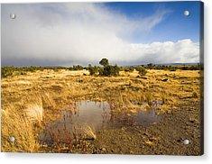 Tasmanian Storm  Acrylic Print by Mike  Dawson