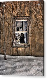 Tattered Curtain In Snow 2010 Acrylic Print by Sari Sauls