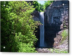 Taughannock Falls 0466 Acrylic Print by Guy Whiteley