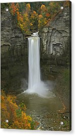Taughannock Falls In Autumn Acrylic Print