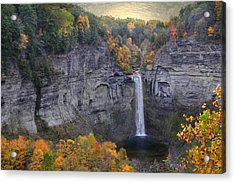 Taughannock Falls In Color Acrylic Print by Jessica Jenney