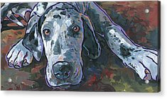 Acrylic Print featuring the painting Taylor by Nadi Spencer