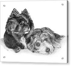 Tayssa And Angel Acrylic Print