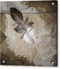 Tea Feather Acrylic Print by Carol Leigh
