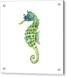 Teal Green Seahorse - Square Acrylic Print by Amy Kirkpatrick