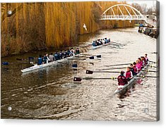 Teams Of Rowers On River Cam Acrylic Print