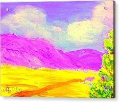 Technicolor Desert Acrylic Print by Lessandra Grimley