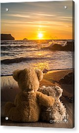 Teddies Watching The Sunset Acrylic Print by Amanda Elwell