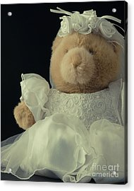 Acrylic Print featuring the photograph Teddy Bear Bride by Edward Fielding