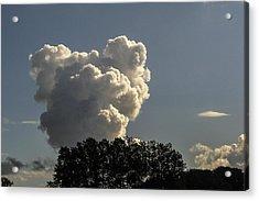 Teddy Bear Cloud Acrylic Print by Kim Lessel