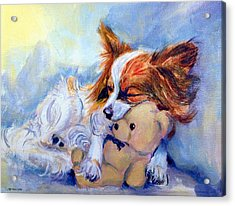 Teddy Hugs - Papillon Dog Acrylic Print by Lyn Cook