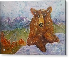 Teddy Wakes Up In The Most Desireable City In The Nation Acrylic Print
