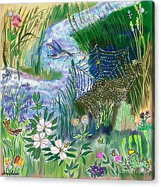 Teen Drawing -- Hummingbird Collecting Silk Acrylic Print by Dawn Senior-Trask