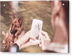 Teen Girl Taking Photo Of Dog With Smartphone Acrylic Print by Jorgo Photography - Wall Art Gallery