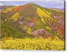 Acrylic Print featuring the photograph Temblor Range Color by Marc Crumpler
