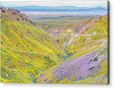 Acrylic Print featuring the photograph Temblor Range View To Caliente Range by Marc Crumpler