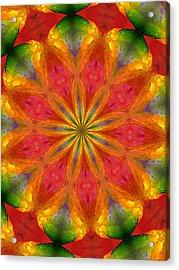 Ten Minute Art 090610-a Acrylic Print by David Lane